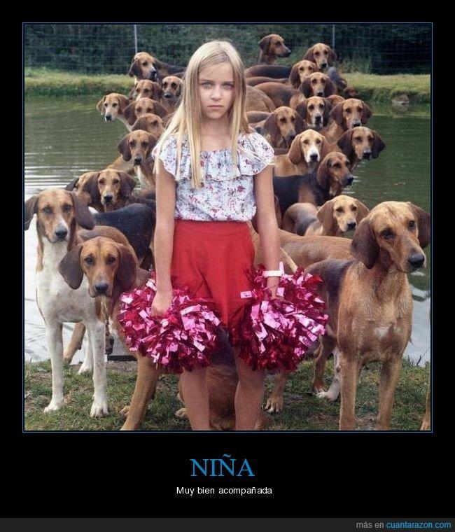 niña,perros,wtf