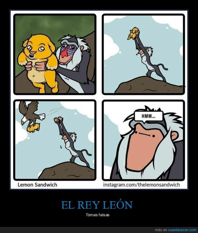 águila,el rey león,tomas falsas