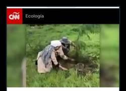 Enlace a Iniciativa ecológica