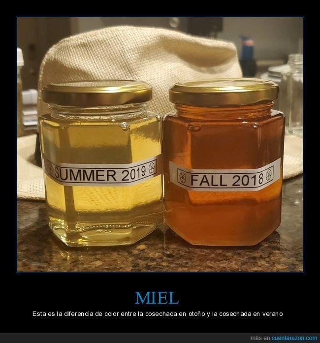 cosechas,diferencias,miel