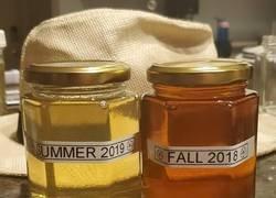 Enlace a Seguro que no conocías esta diferencia de la miel