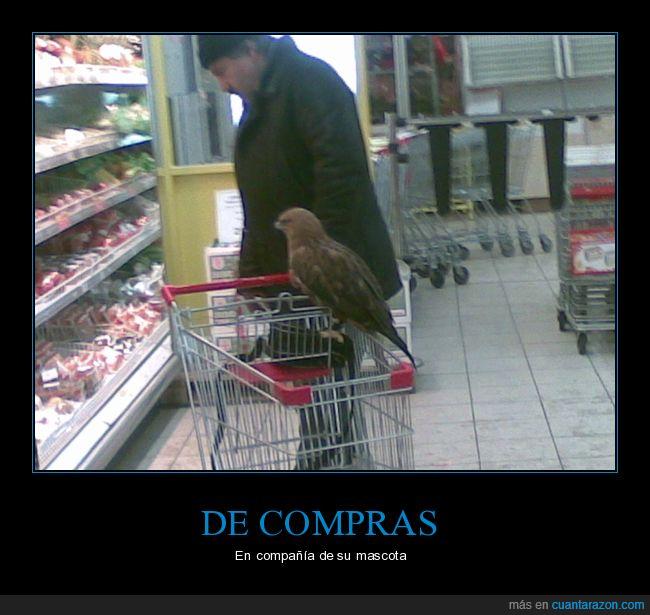 halcón,supermercado,wtf