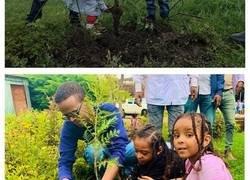 Enlace a Etiopía bate el récord de plantar árboles al plantar en 12 horas 350 millones de árboles