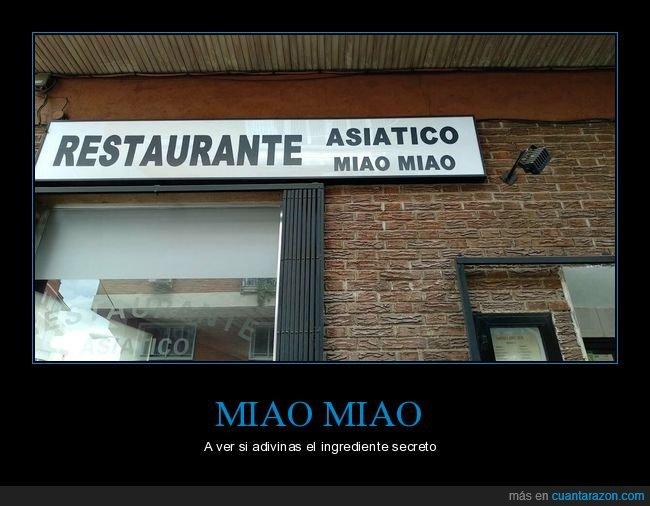 gato,miao miao,restaurante chino