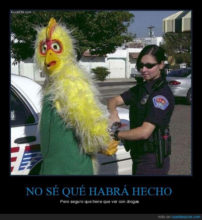 arrestado,drogas,mascota