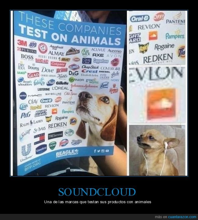 animales,marcas,soundcloud,testadas