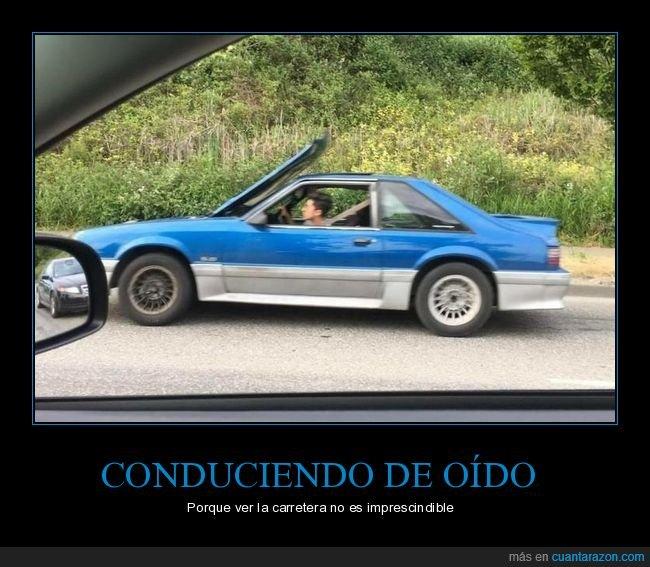 capó,coche,fails,wtf