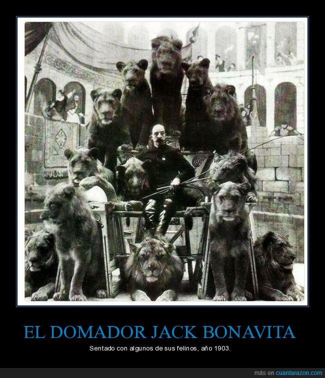 domador,jack bonavita,leones