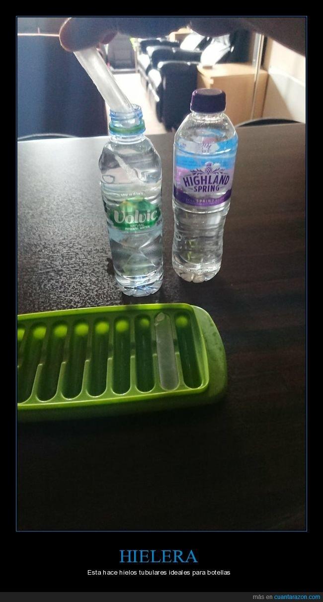 botellas,hielera,hielos