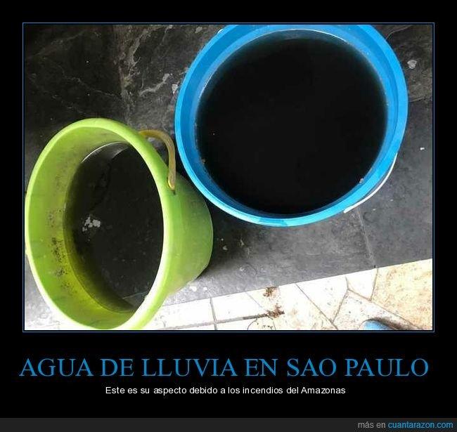 agua,amazonas,brasil,incendios,lluvia,sao paulo