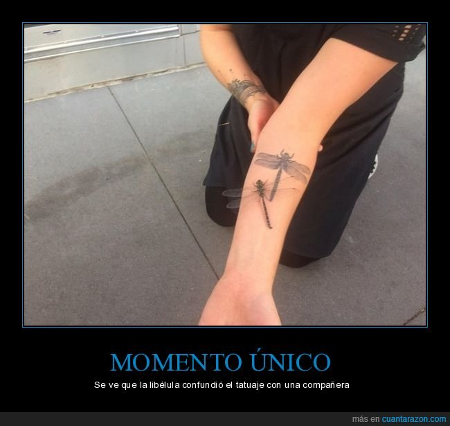 libélula,tatuaje,wtf