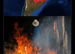 Enlace a El Amazonas, el pulmón de la Tierra arde en llamas