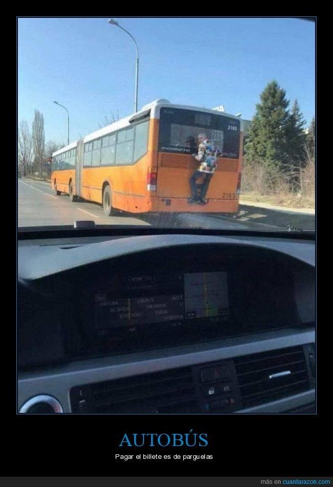 acoplado,autobús,wtf