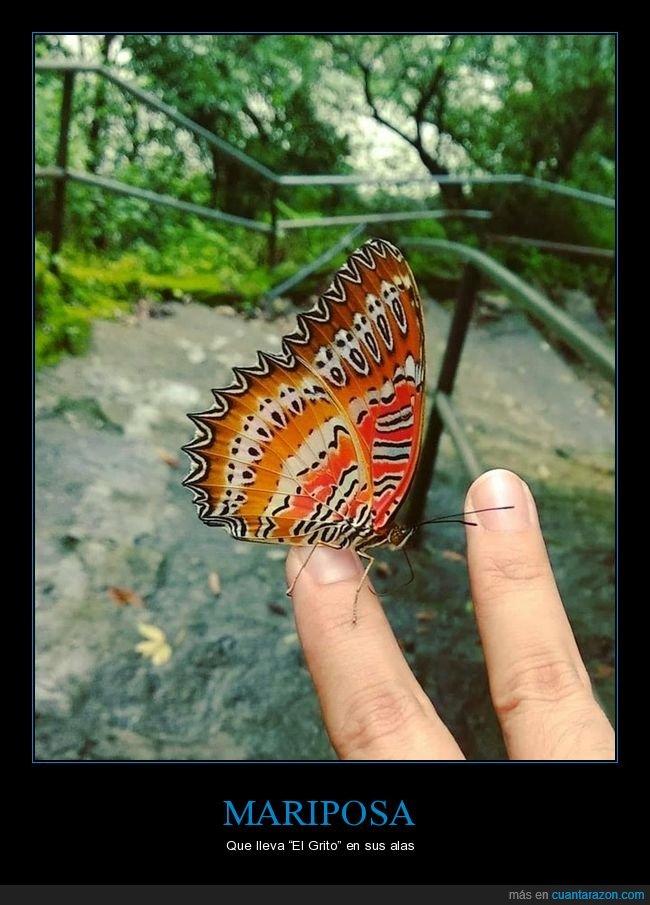 alas,el grito,mariposa