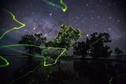 Enlace a Los caminos de las luciérnagas