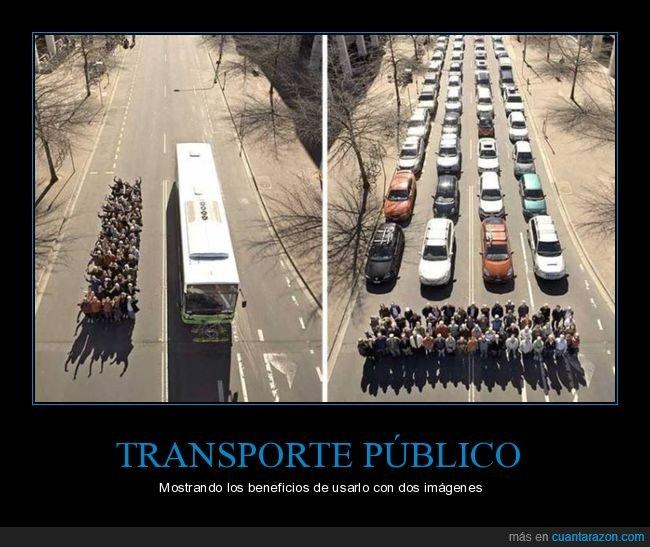 autobús,coches,transporte público