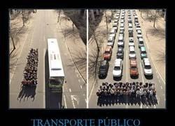 Enlace a Los beneficios del transporte público