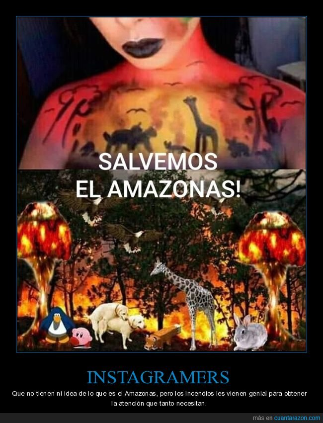 amazonas,animales,dibujo,instagramer,salvar