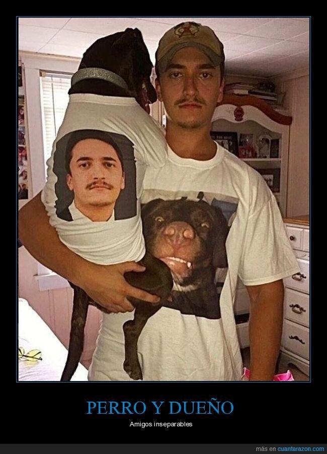 camisetas,dueño,perros