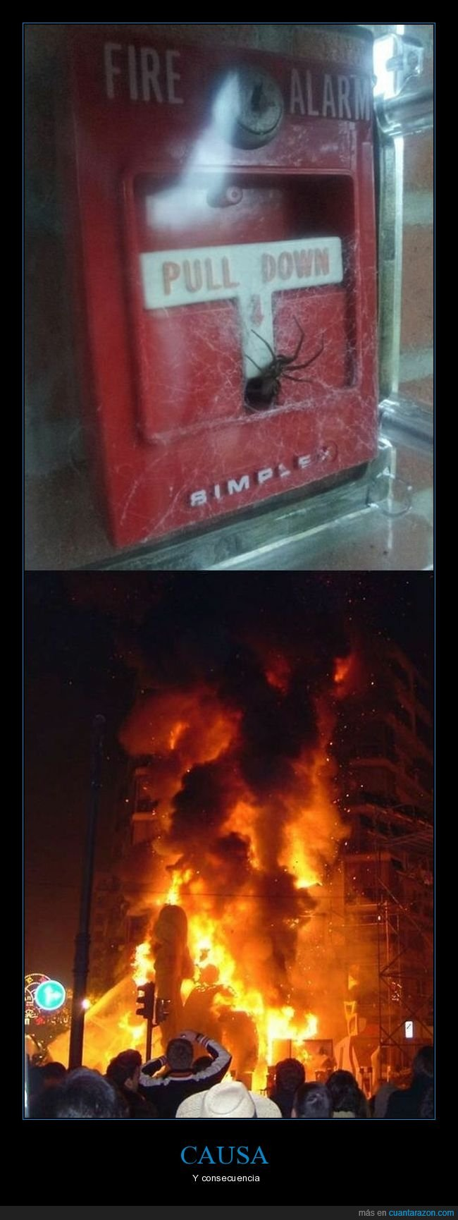 alarma de incendios,araña,incendio