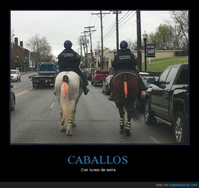 caballos,luces,policía