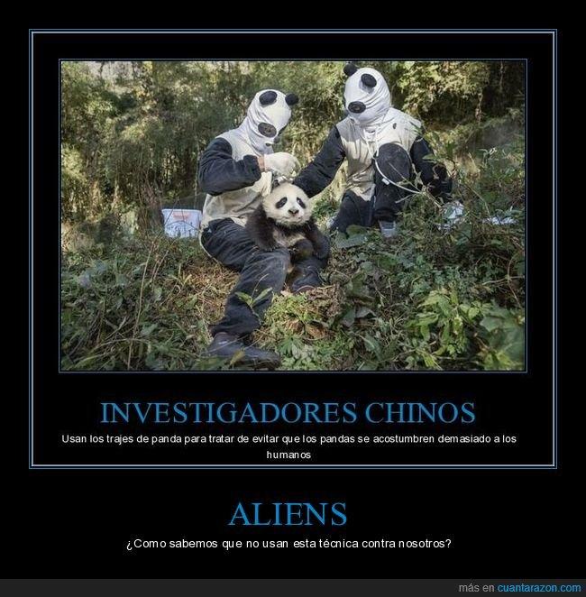 aliens,infiltrados,pandas