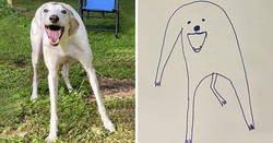 Enlace a Esta persona intentó dibujar a su perro y sin querer comenzó a crear obras maestras