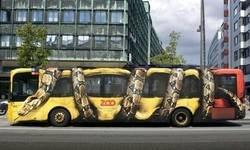 Enlace a Autobús temático