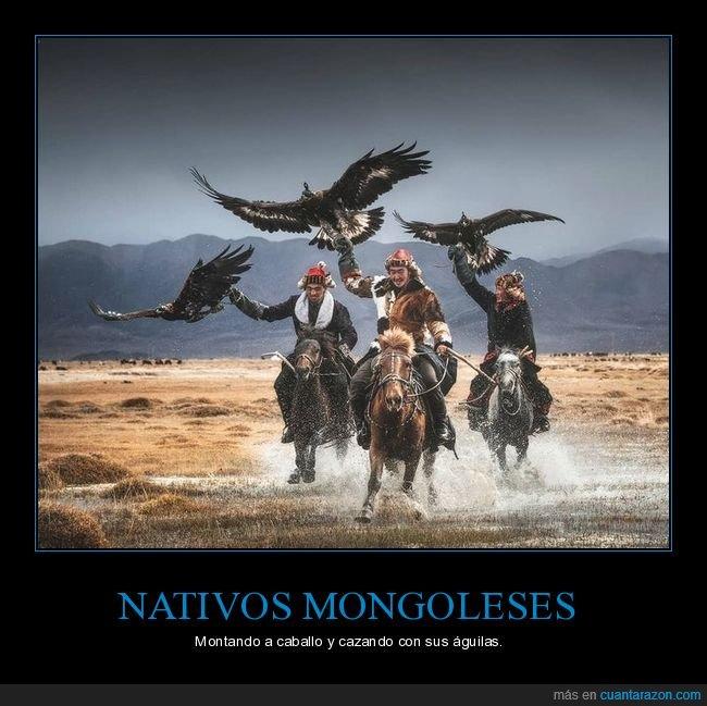 águilas,caballo,mongoleses