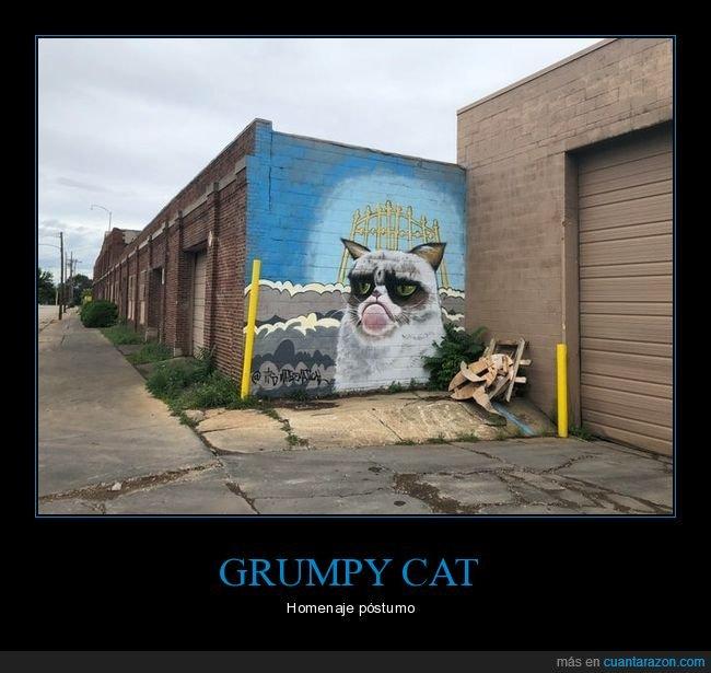 arte urbano,grumpy cat,mural