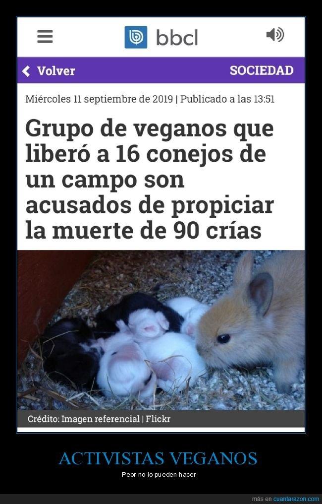 conejos,crías,liberar,muerte,veganos
