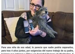 Enlace a Esta mujer adoptó a un perro anciano porque se parecía al cachorro de su infancia, y se dio cuenta de que era el mismo