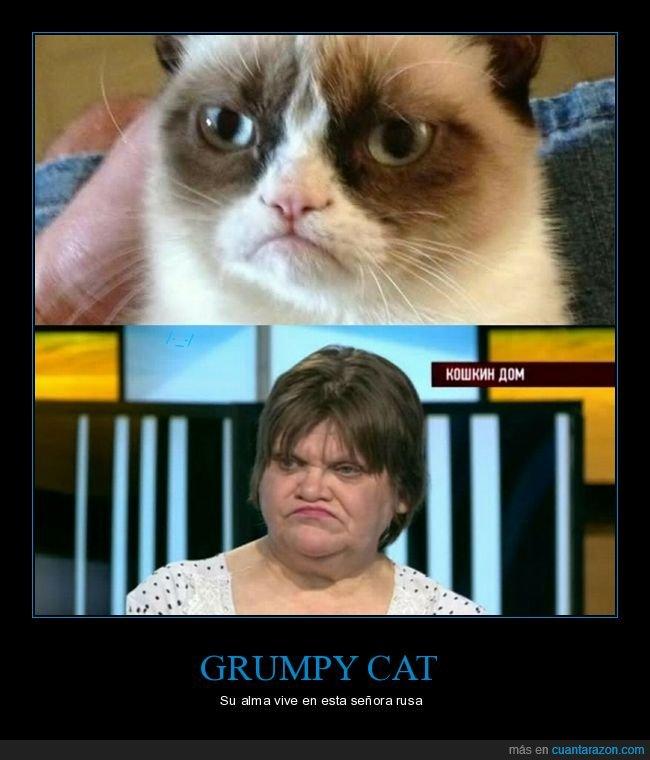 grumpy cat,parecidos,rusa,señora