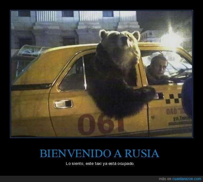 oso,rusos,taxi