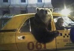Enlace a Solo podía ser Rusia