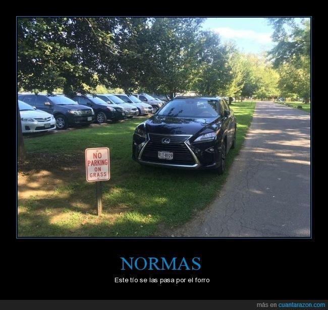aparcar,cartel,césped,coche