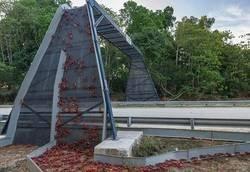 Enlace a Puentes para cangrejos