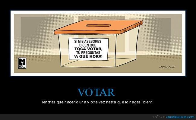 asesores,elecciones,políticos,votar