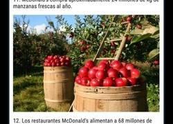 Enlace a Datos curiosos sobre McDonald's que no todo el mundo conoce