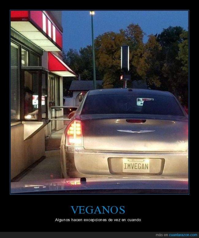 coche,kentucky,matrícula,vegano,wtf