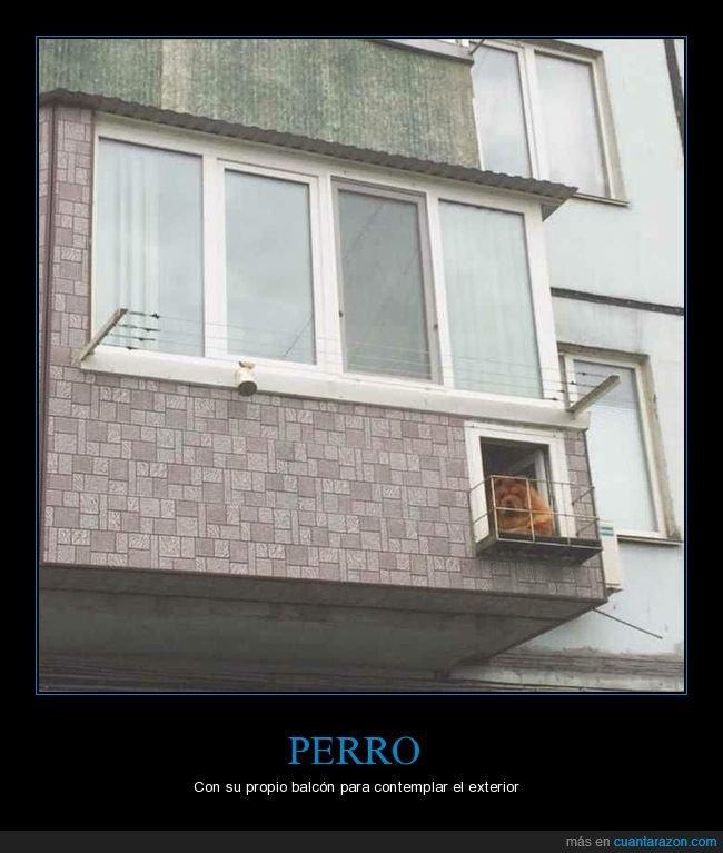 balcón,peeros,wtf