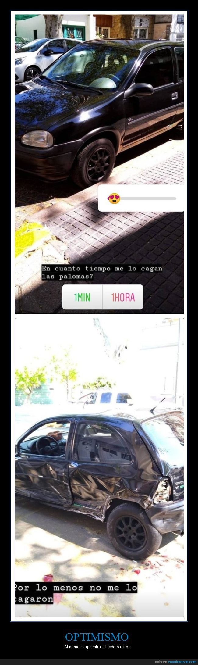 accidente,cagar,coche,fails,palomas