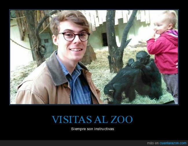 monos,niño,zoo
