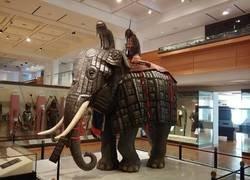 Enlace a Elefante de batalla