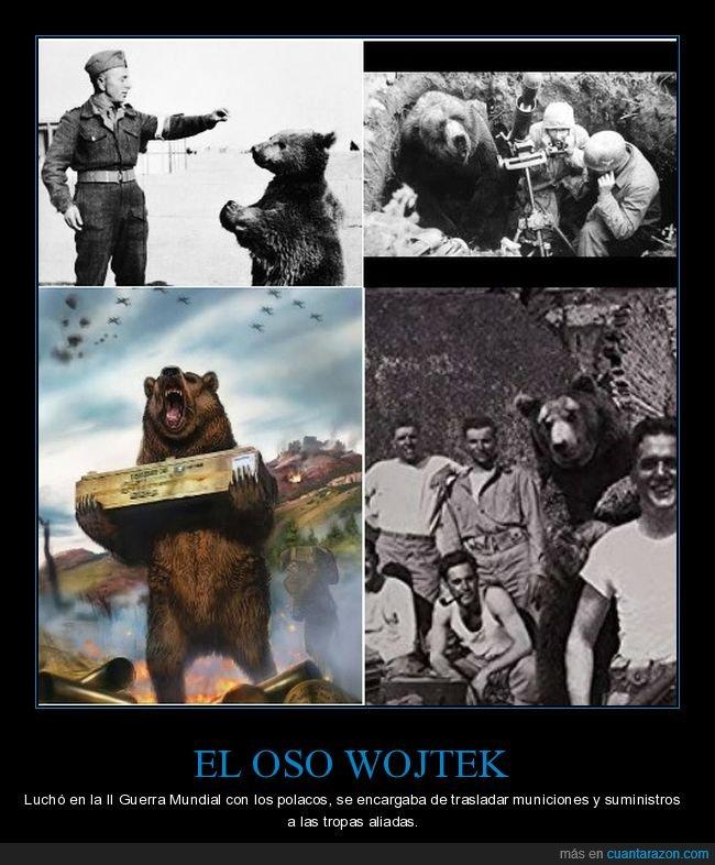 ii guerra mundial,oso,polacos,wojtek