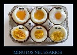 Enlace a Guía para cocer huevos
