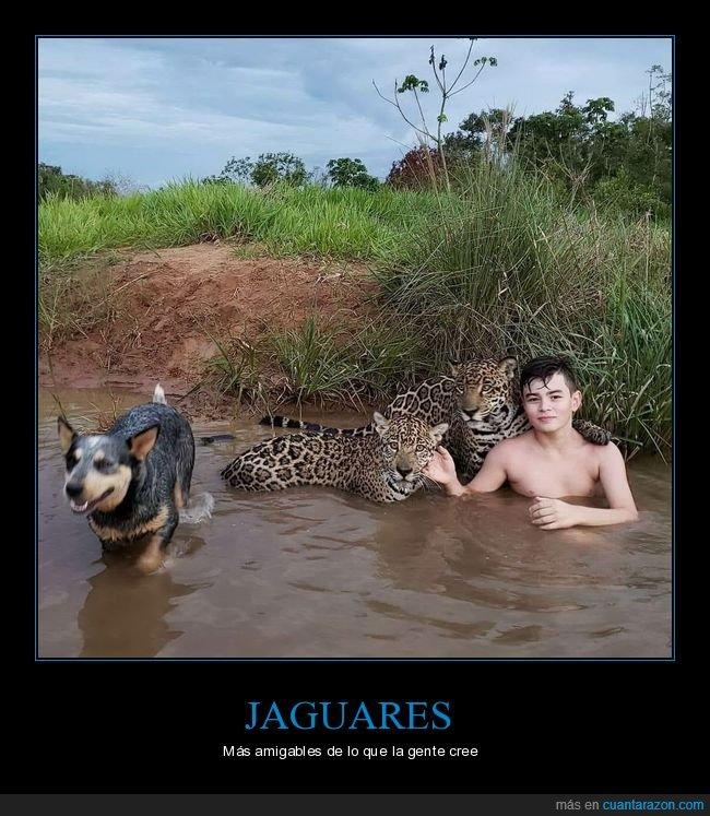 jaguares,niño,wtf