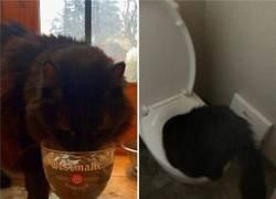 Enlace a Tiene un problema con la bebida