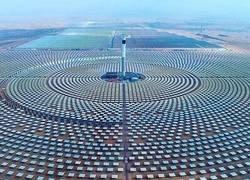 Enlace a Apostando por las renovables