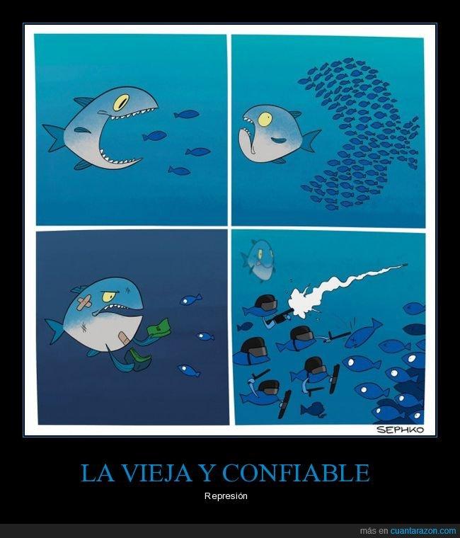 antidisturbios,peces